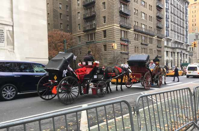 Horse Drawn Carriages along Central Park West
