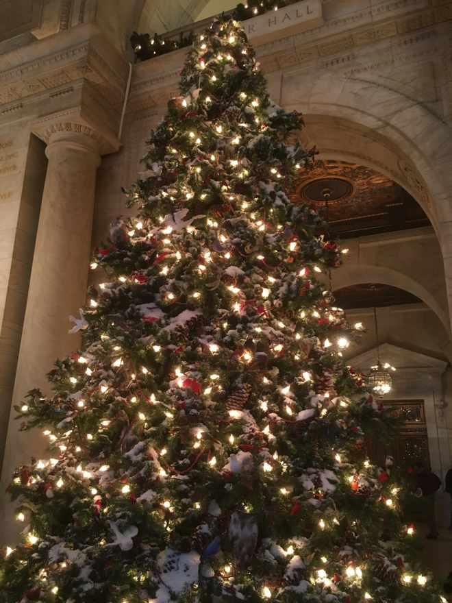 New York Public Library Christmas Tree